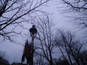 19 Blvd de Marigny in the Rain