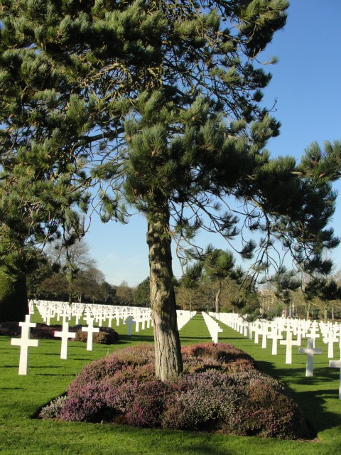 American Cemetery - Normandy (41)