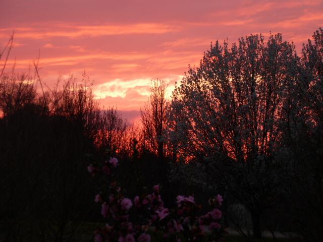 Spring Sunset (3)