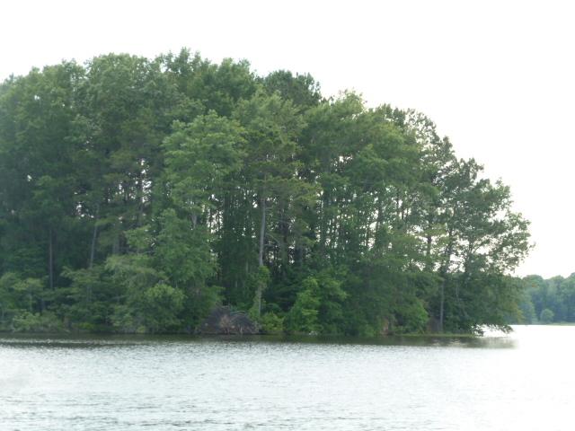 Caney Lake (21)