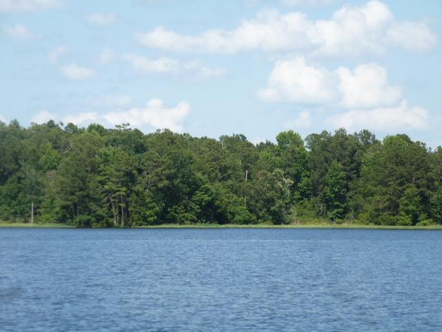 Caney Lake (3)