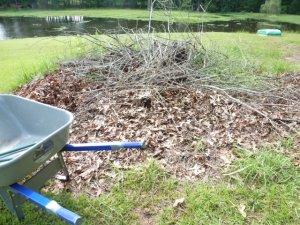 Yard Work (2)