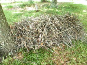 Yard Work (3)