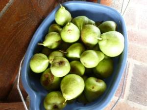 Freezing Pears