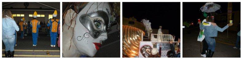 Mardi Gras 2014 (5)