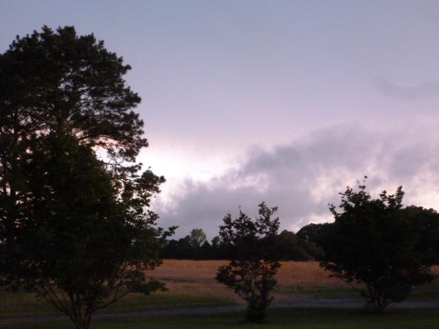 Impending Storm (15) - Copy