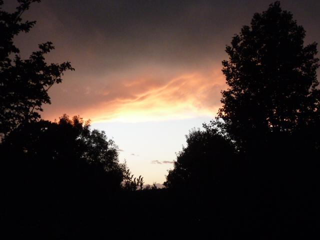 Impending Storm (18) - Copy