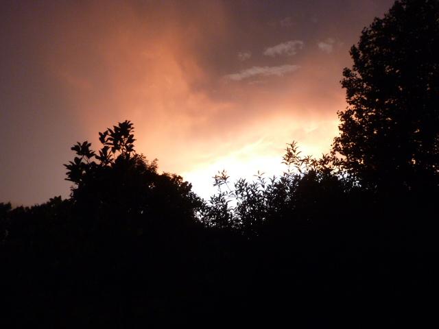 Impending Storm (5) - Copy