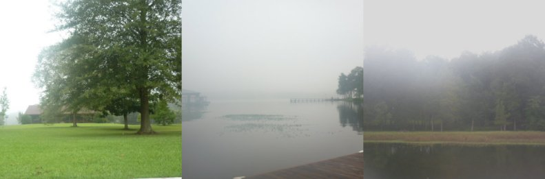 Misty Morning on Dream Tree Bayou