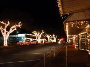 Piney Woods Christmas Festival 2014 (4)