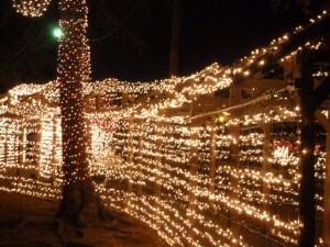 Piney Woods Christmas Festival 2014 (7)