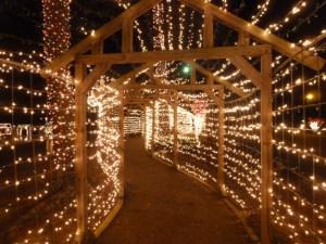 Piney Woods Christmas Festival 2014 (8)