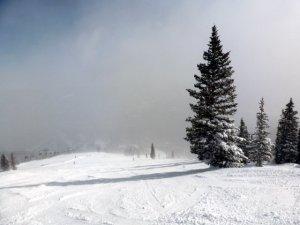 Breck 2015 (35)
