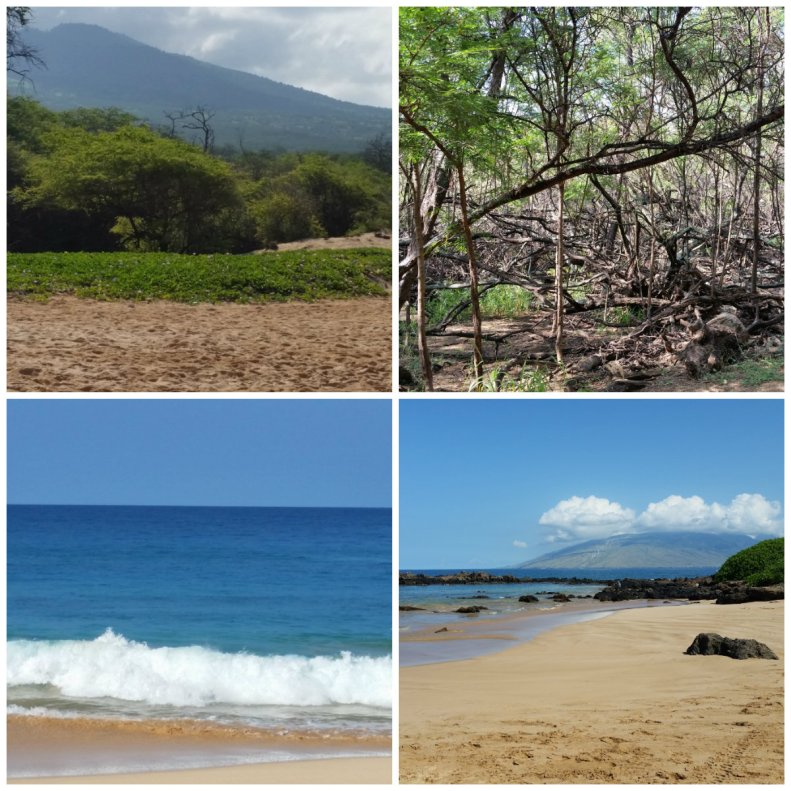 Beaches on Maui