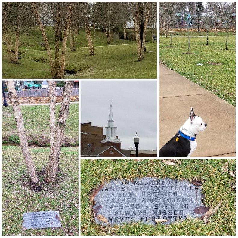 Dogwood Park, Cookeville TN